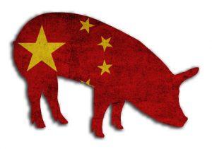 porcino_china